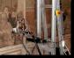 Misure XRF: gli affreschi di Giotto nella Basilica di Santa Croce, Firenze